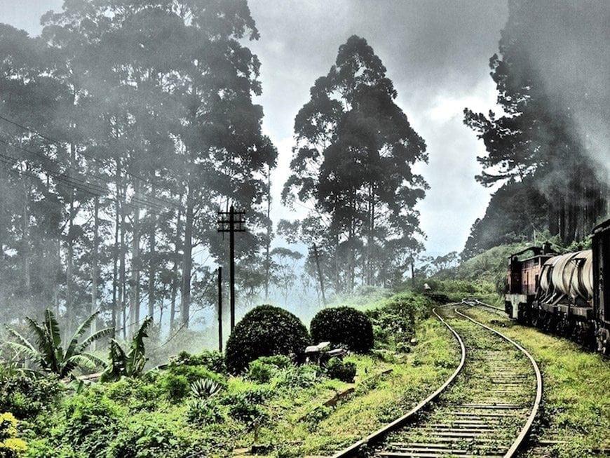 Fun Things to See, Eat and Do in Sri Lanka - Train