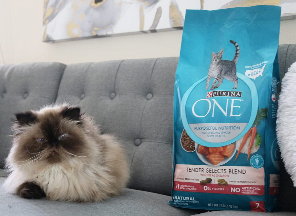 Purina One - 28 Day Challenge 4